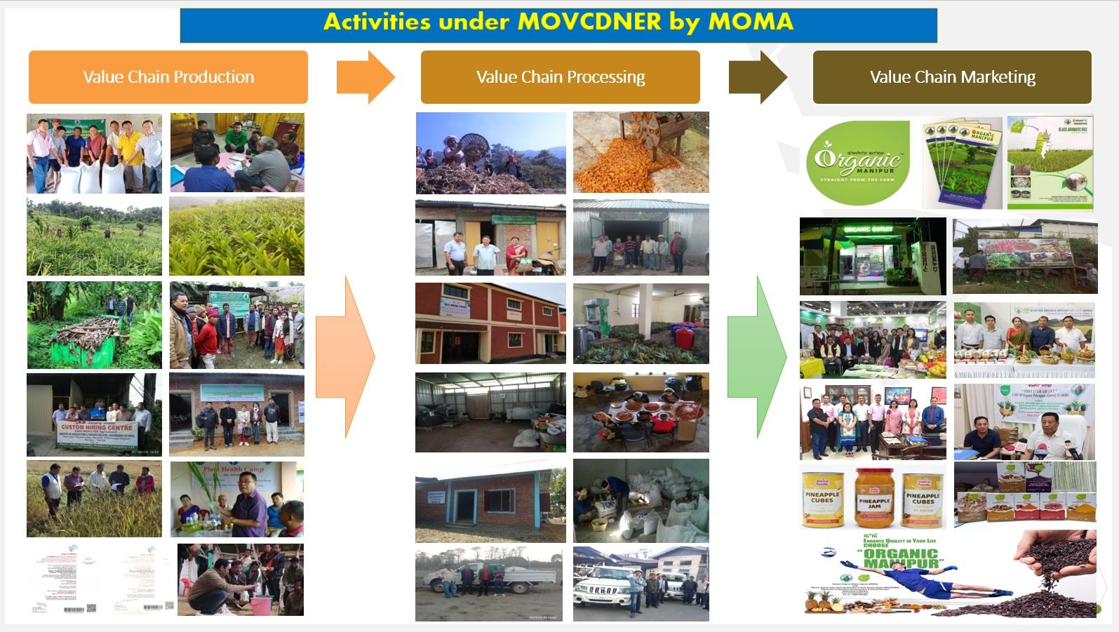 activities under MOMA